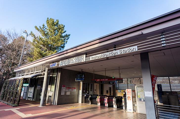 デート スポット プラン 学生 中学生 高校性 都内 カップル 吉祥寺 井の頭公園