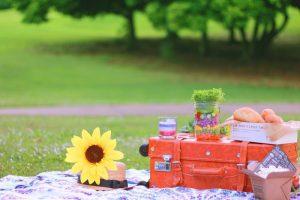 公園 デート 楽しい すること 何する 遊び 過ごし方 オススメ カップル ピクニック お弁当 食事