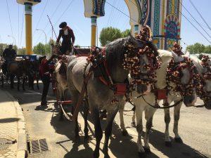 セビリア セビージャ 春祭り スペイン 3大祭り 楽しい 踊る 食事 写真 馬車
