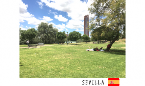TETSU 人生 スペイン セビージャ 公園 考え事 海外 留学 想像 帰国 日本